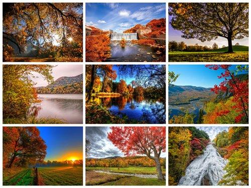 پکیچ 50 عکس جنگل پاییزی 2560x1600