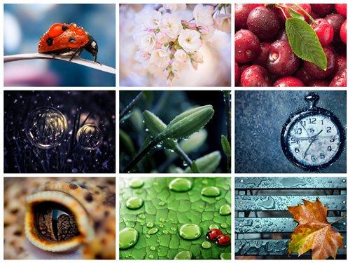 مجموعه 60 تصویر با موضوعات متنوع 1920x1200